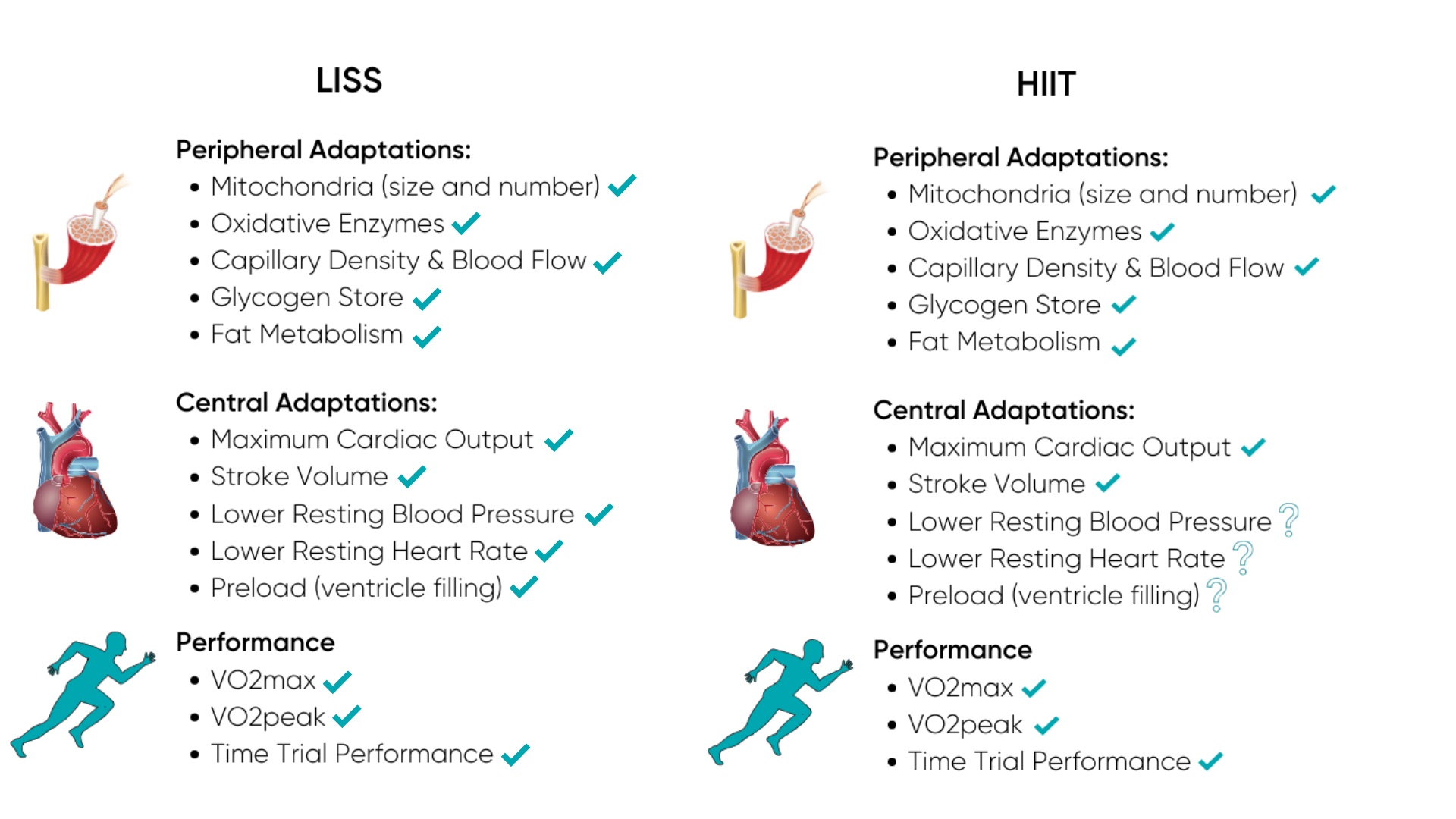 HIIT vs LISS Physiological Adaptations