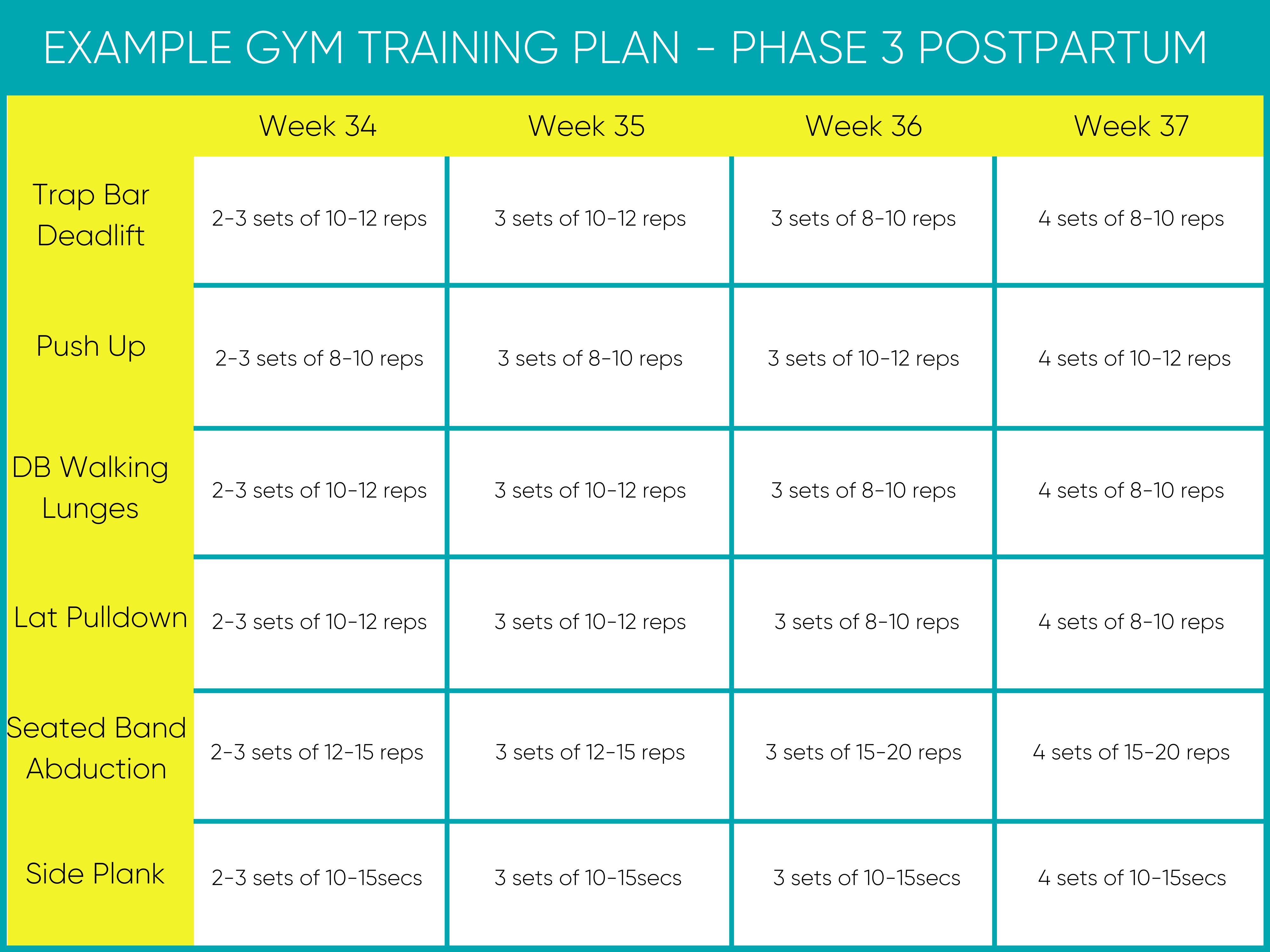 Postpartum Training Program Example